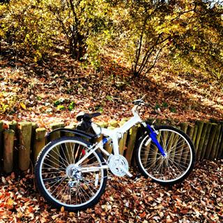 Cycle_img_20121211_195732