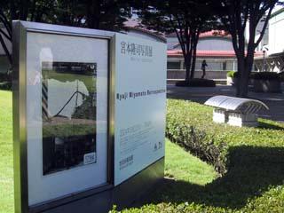 at_kinuta_park.jpg