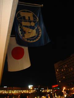 fia_flag.jpg